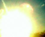 shine yellow.jpg